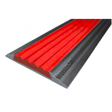 Алюминиевая  полоса  без покрытия с резиновой вставкой (46мм*5мм), 2,0 м