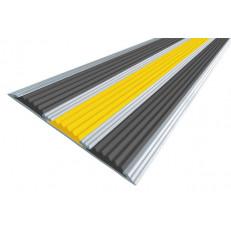 Алюминиевая полоса  без покрытия с тремя вставками 100 мм/5,6 мм, 2,00 м