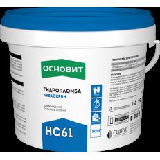 ГИДРОПЛОМБА АКВАСКРИН HC61 (T-61), 500 гр